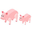 3d design for farm pigs vector image