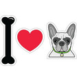 I love French bulldog hipster with collar vector image