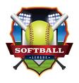 Softball League Badge Emblem Icon vector image