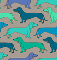 Seamless pattern of Dachshund dogs vector image
