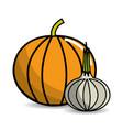 pumpkin and garlic vegetable icon vector image