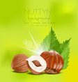 hazelnut kernels vector image