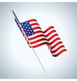 American Fag Waving vector image
