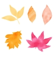 Watercolor style autumn leaves Set of vector image