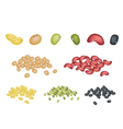 Set of Different Beans on White Background vector image
