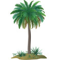 Palm tree and plants vector image vector image