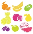Fruit Collection for your Design vector image vector image
