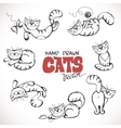Sketch of playful cats vector image vector image