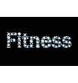 Diamond word Fitness vector image vector image