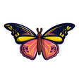 wandered butterfly icon cartoon style vector image