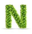 Letter N alphabet of green leaves vector image