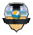 Volleyball Badge Emblem vector image