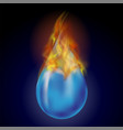 burning water drop with fire flame vector image vector image