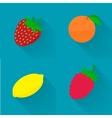 flat - juicy fruit fruit set vector image