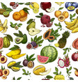 fruits as seamless pattern background for wrapper vector image