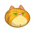grumpy cat cartoon icon vector image