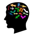 head multicolored pointer vector image vector image