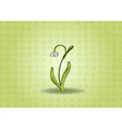 snowdrop on the green background vector image vector image
