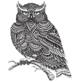Hand Drawn Abstract Pattern Owl vector image