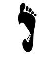 feet logo vector image
