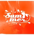 summer background with the inscription vector image