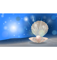 pearl shell vector image vector image