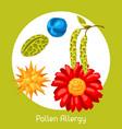 pollen allergy for medical vector image
