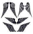 Angel wings set silhouette vector image