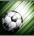 soccer ball on colorful background vector image