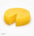 wheel of cheese vector image