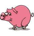 farm pig cartoon vector image vector image
