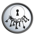 Bunch of keys vector image