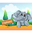 A baby elephant beside a wooden board vector image