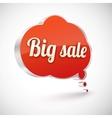 Big sale icon vector image