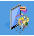 Concept of Shopping Internet Shop vector image