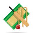 cricket field vector image vector image