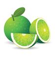 green lemon vector image