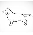 labrador puppies vector image vector image