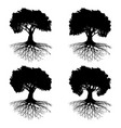 tree with roots vector image vector image