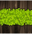 Green summer leaves on wooden background vector image
