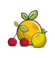 orange cherry and lemon fruits icon vector image
