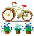 bike and blue lilies in pots isolated vector image