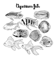 Graphic aquarium fish vector image