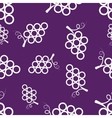 Pattern Circuit Grapes vector image