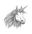 unicorn horse animal sketch vector image vector image