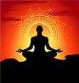 Meditating and doing yoga man vector image