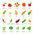 Flat design icon vegetables set vector image