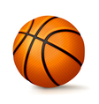 Basketball Isolated on White vector image vector image