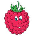 fresh raspberry cartoon vector image