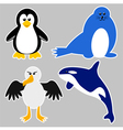 Antarctica Animals vector image